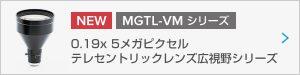 bnr_mgtl019vm