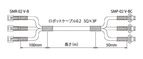 P33_06